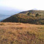 Ma On Shan Highland Hiking Tour - Walk Hong Kong