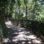 Peak To South Hiking Tour - Walk Hong Kong